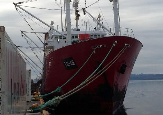 Motor de cabrestante del buque Tai an